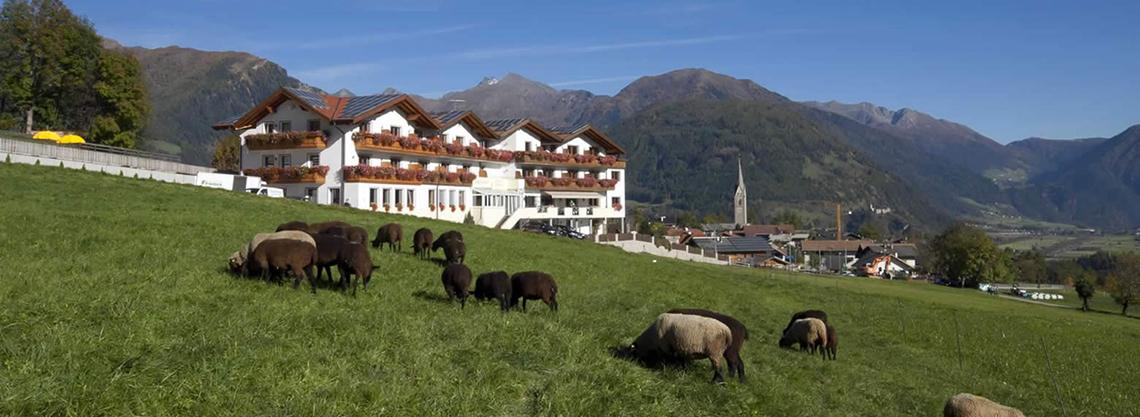 Hotel Lahnerhof