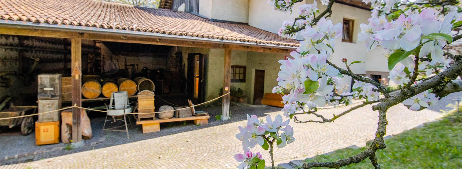 Südtiroler Obstbaumuseum